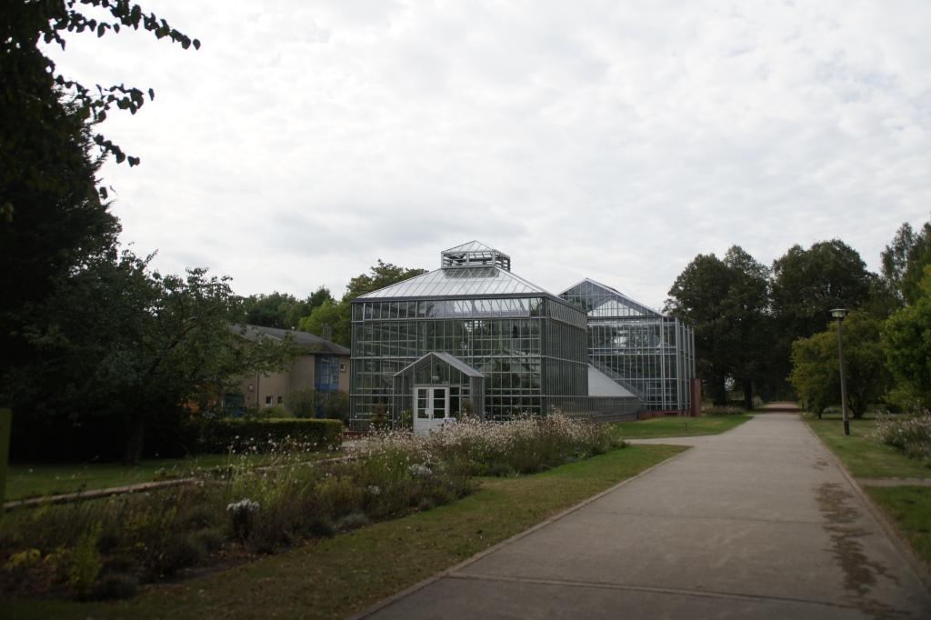 botanischer volkspark roberta caldas