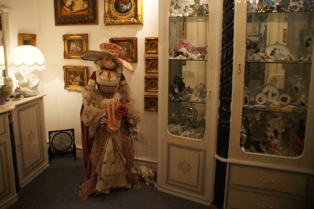 cat museum roberta caldas